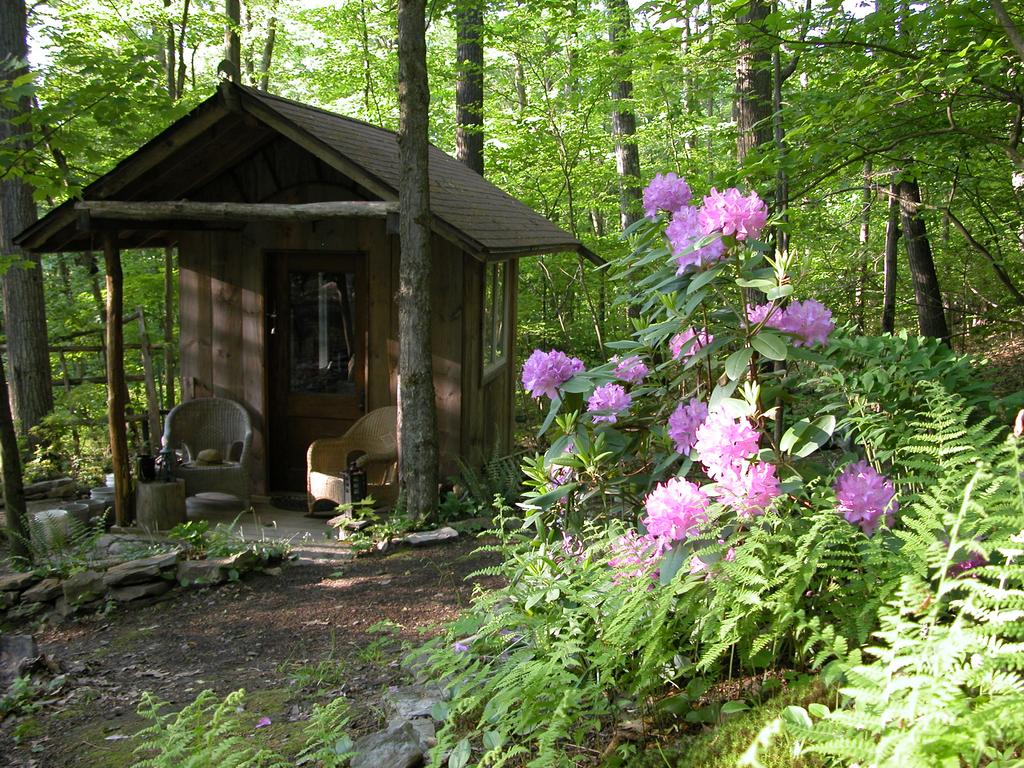 Two Tiny Cabins With Land For Sale Near Ithaca Ny