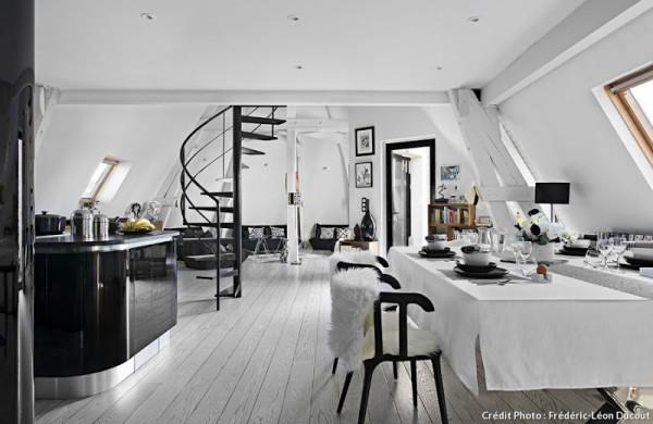 Attic Loft attic transformed into tiny modern loft in paris