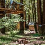 Tiny Redwood Cabin with Ziplines and Treehouse 040