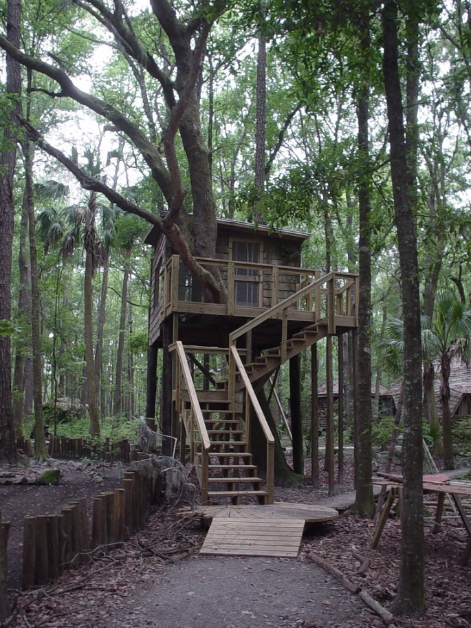 tree houses at hostel forest in brunswick  georgia