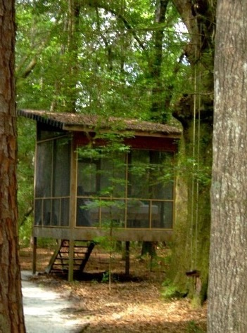 Tree Houses at Hostel Forest in Brunswick Georgia 004
