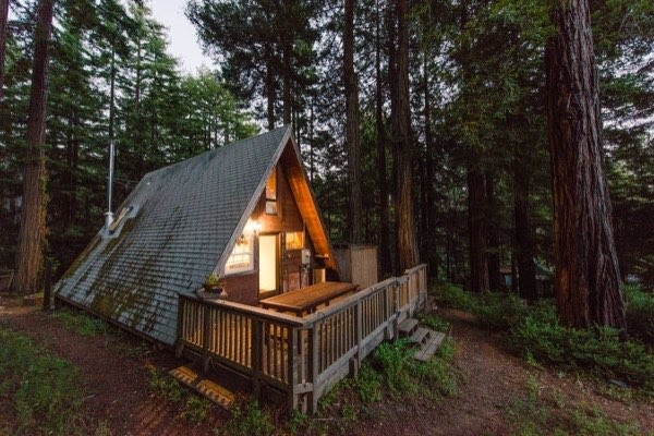 Amazing tiny a frame cabin in the redwoods for Amazing small houses