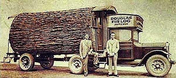 The Original Tiny House On Wheels Douglas Fir Log Motorhome One Of