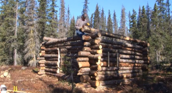 Tiny Pioneer Log Cabin In Alaska Built In 15 Days