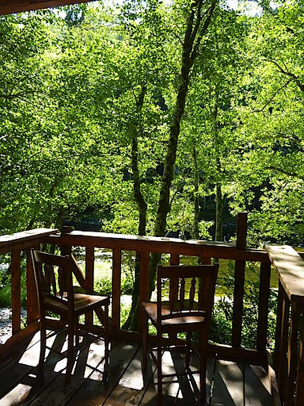 river view from porch 2   Tiny Cabin by the River For Sale by Owner with Land