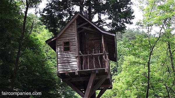 Man Builds Slim Treehouse in Mount Fuji