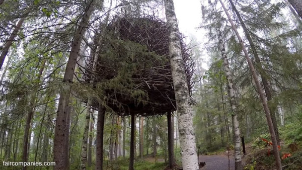 ufo-like-treehouses-in-forest-005