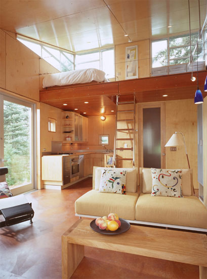 C 3 Cabin And Plans 480 Sq Ft Modern Loft Tiny Home