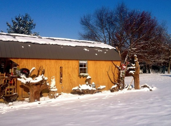 womans-300-sq-ft-tiny-cabin-in-southern-indiana-0016