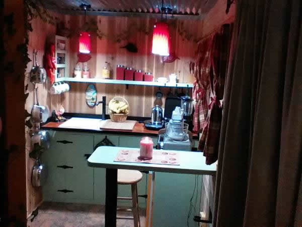 160-sqft-tiny-house-for-sale-004