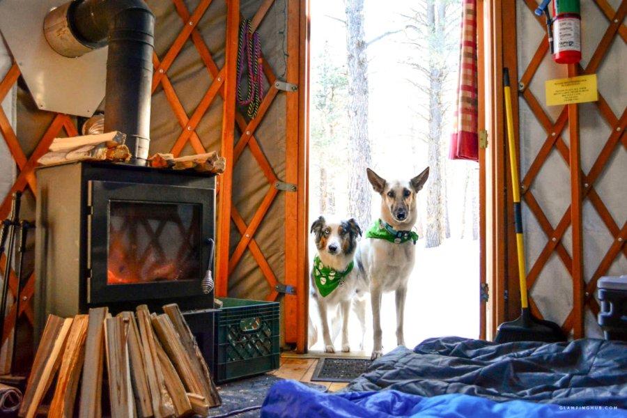 Tiniest Yurt Cabin Flagstaff Arizona