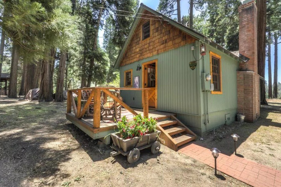 600 SF Wildflower Cabin 001
