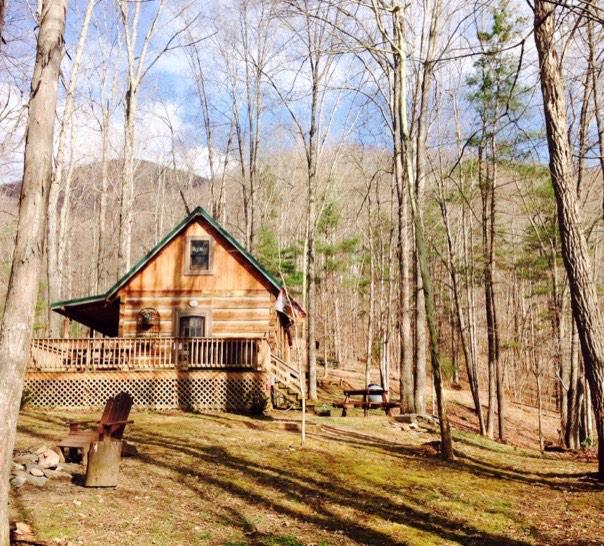 600 sq ft 39 bearadise 39 tiny cabin for Small vacation home kits