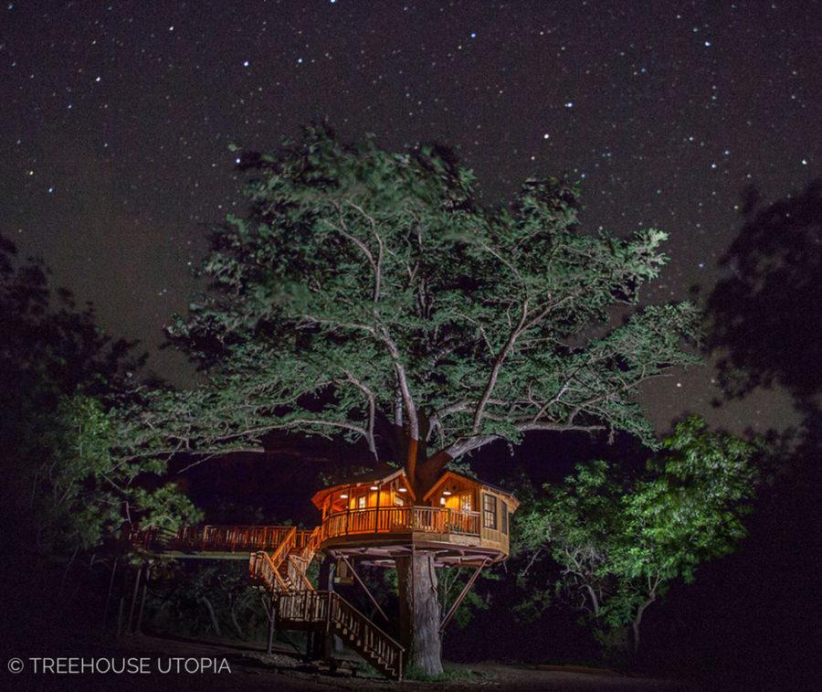 Bibliotheque_Treehouse_Utopia_Night_Photo_2018-88