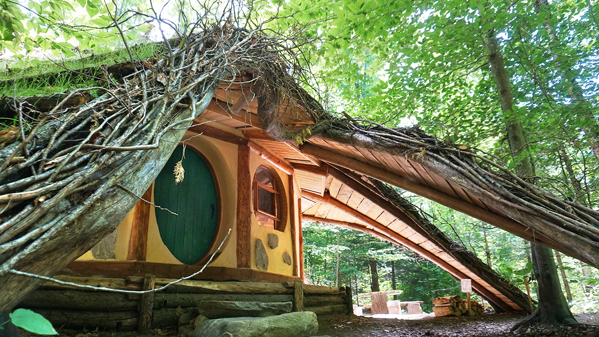 Hobbit House With Amazing Green Roof Video