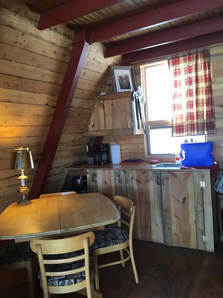 Off Grid Moose Haven Cabin in Colorado 11