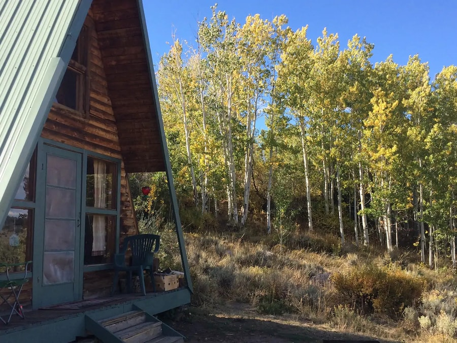 Off Grid Moose Haven Cabin in Colorado 7