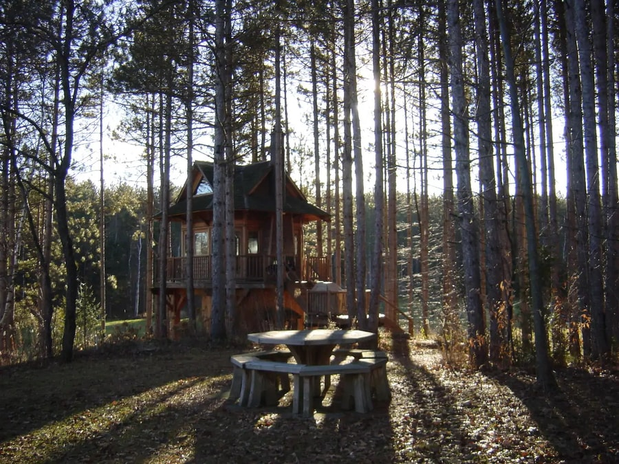 Ontario Treehouse on 300 Isolated Acres 010