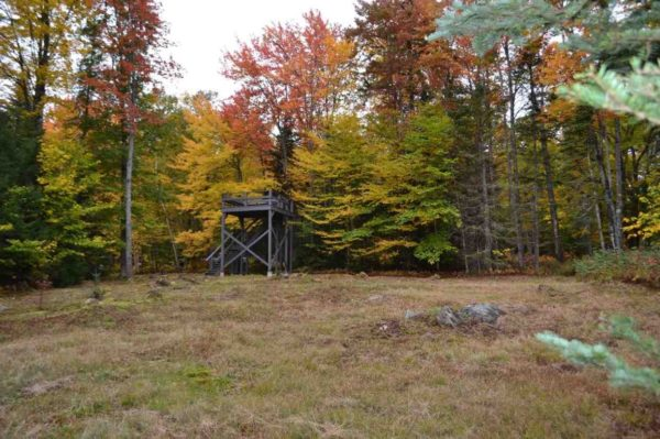 tiny-log-cabin-on-17-acres-in-vermont-0010