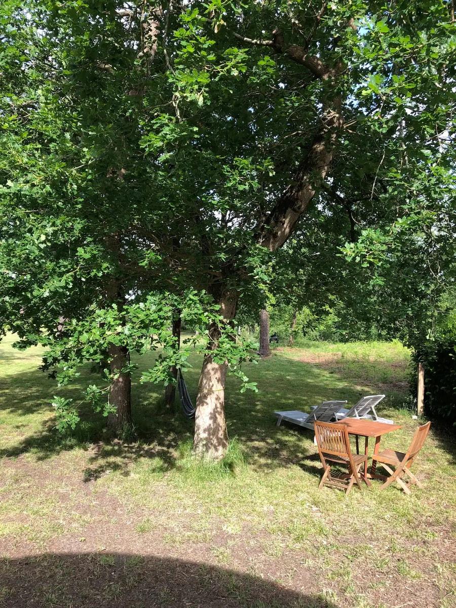 Evelyne's Charming Shepherd's Hut in France 8