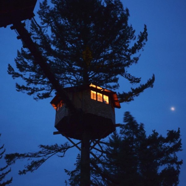 the-cinder-cone-treehouse-cabins-and-skatepark-0020